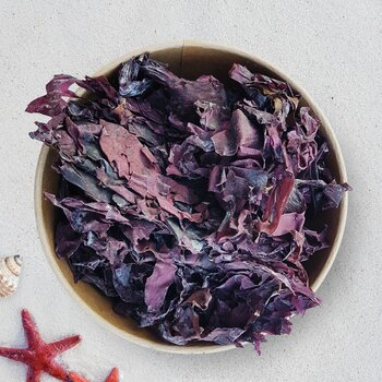 Seaweed Dulse dried organic & raw 80g