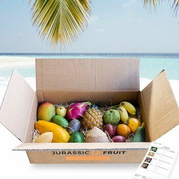 Exotic Fruit Discovery Box Large